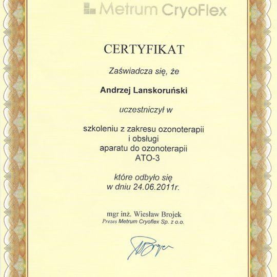 https://www.ozonoterapia.bydgoszcz.pl/wp-content/uploads/2017/06/10-Certyfikaty-min-2-540x540.jpg