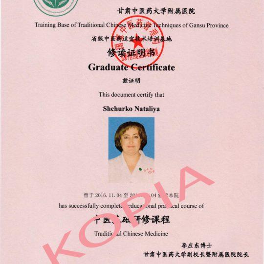 https://www.ozonoterapia.bydgoszcz.pl/wp-content/uploads/2017/06/sertyfikat-medycyny-chinskiej-540x540.jpg